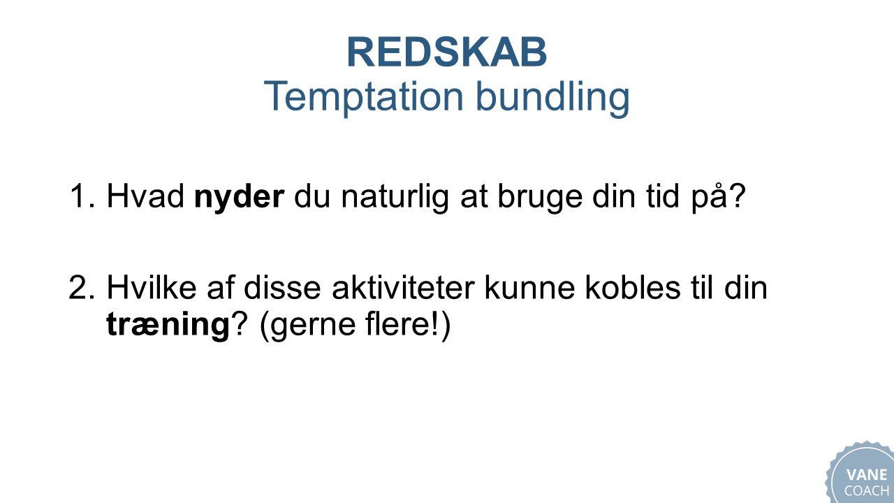 REDSKAB Temptation bundling 1.Hvad nyder du naturlig at bruge din tid på.