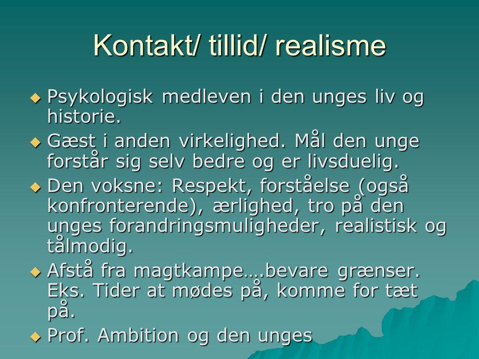 Kontakt/ tillid/ realisme  Psykologisk medleven i den unges liv og historie.