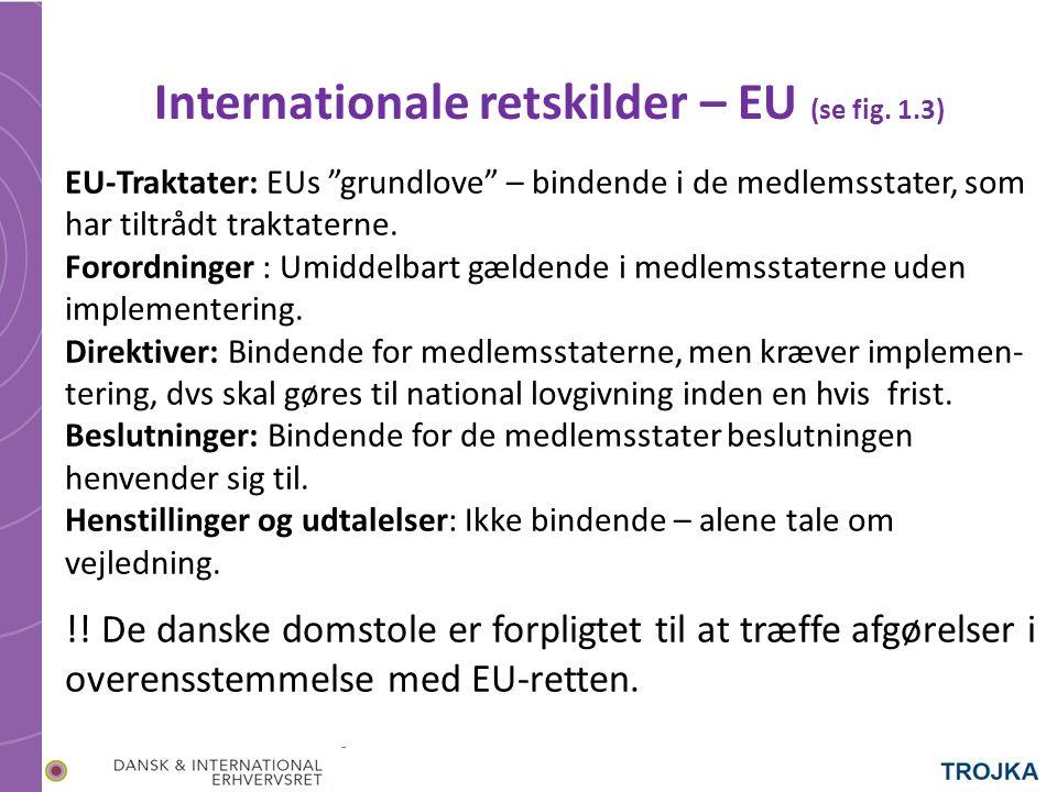 Internationale retskilder – EU (se fig.