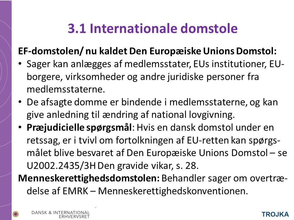 3.1 Internationale domstole EF-domstolen/ nu kaldet Den Europæiske Unions Domstol: Sager kan anlægges af medlemsstater, EUs institutioner, EU- borgere, virksomheder og andre juridiske personer fra medlemsstaterne.