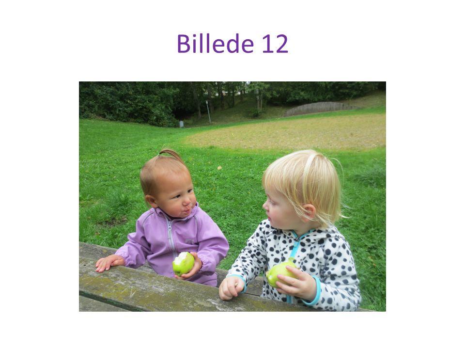 Billede 12