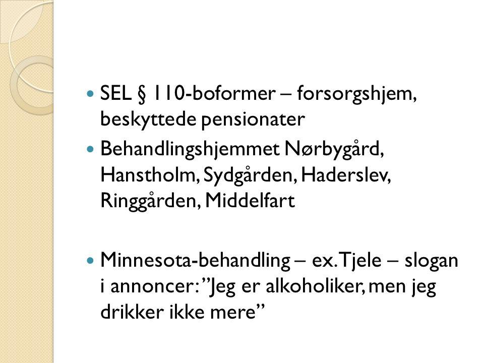 SEL § 110-boformer – forsorgshjem, beskyttede pensionater Behandlingshjemmet Nørbygård, Hanstholm, Sydgården, Haderslev, Ringgården, Middelfart Minnesota-behandling – ex.