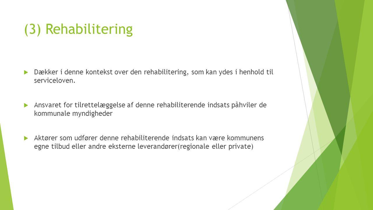 (3) Rehabilitering  Dækker i denne kontekst over den rehabilitering, som kan ydes i henhold til serviceloven.