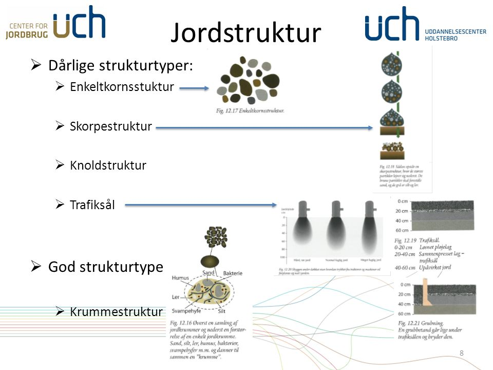 Jordstruktur  Dårlige strukturtyper:  Enkeltkornsstuktur  Skorpestruktur  Knoldstruktur  Trafiksål  God strukturtype  Krummestruktur 8