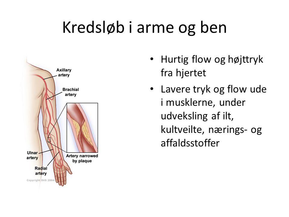 Kredsløb i arme og ben Hurtig flow og højttryk fra hjertet Lavere tryk og flow ude i musklerne, under udveksling af ilt, kultveilte, nærings- og affaldsstoffer