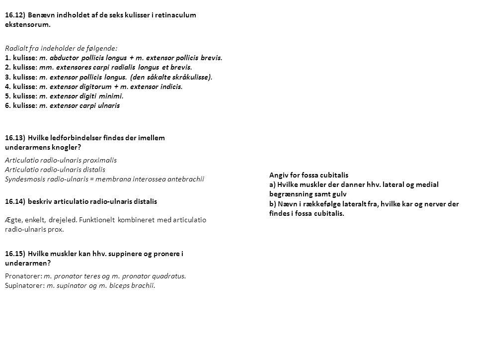 16.13) Hvilke ledforbindelser findes der imellem underarmens knogler? Articulatio radio-ulnaris proximalis Articulatio radio-ulnaris distalis Syndesmo