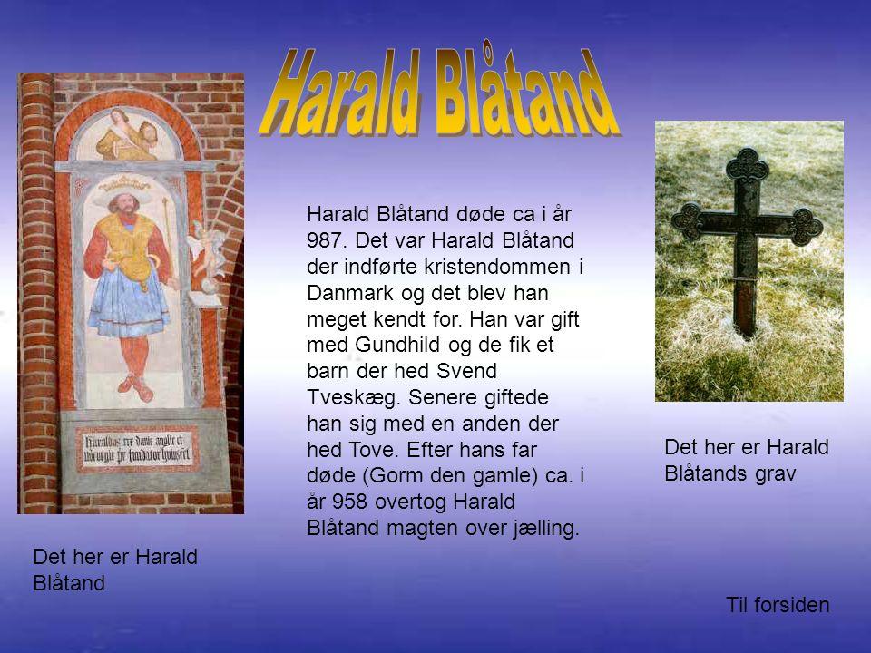 Harald Blåtand døde ca i år 987.