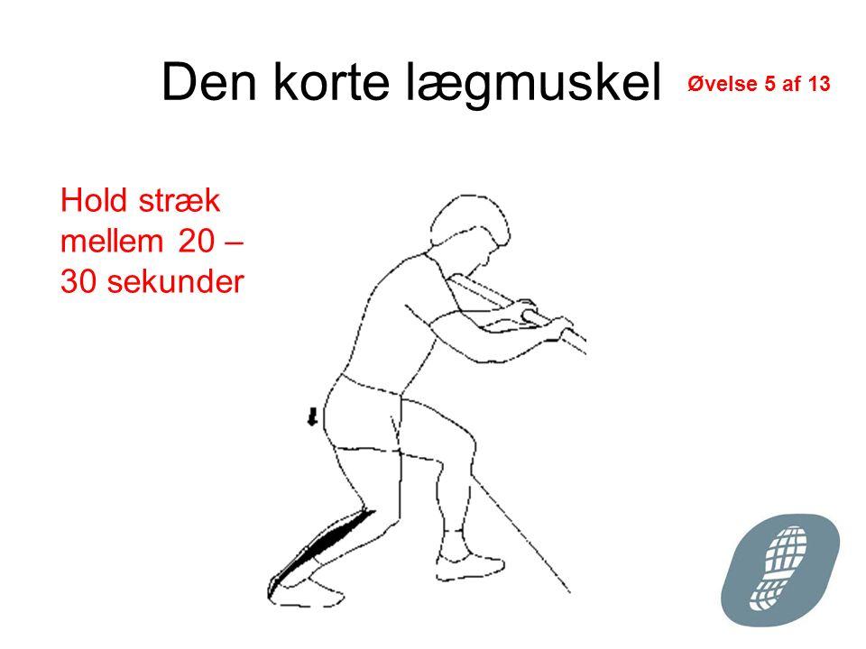 Den korte lægmuskel Hold stræk mellem 20 – 30 sekunder Øvelse 5 af 13