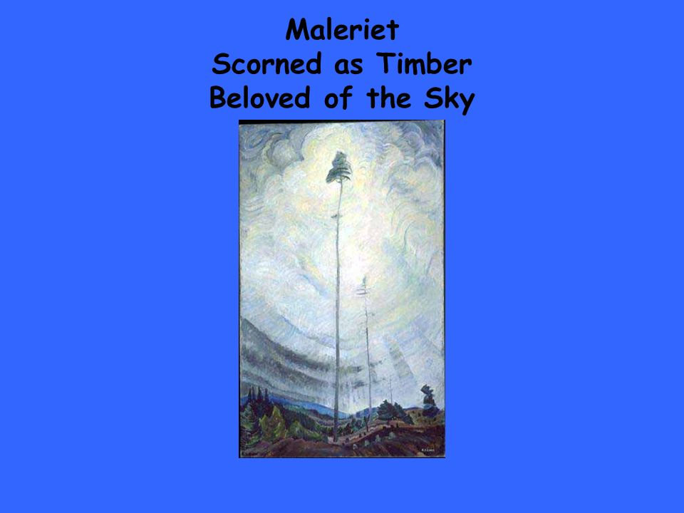 Maleriet Scorned as Timber Beloved of the Sky