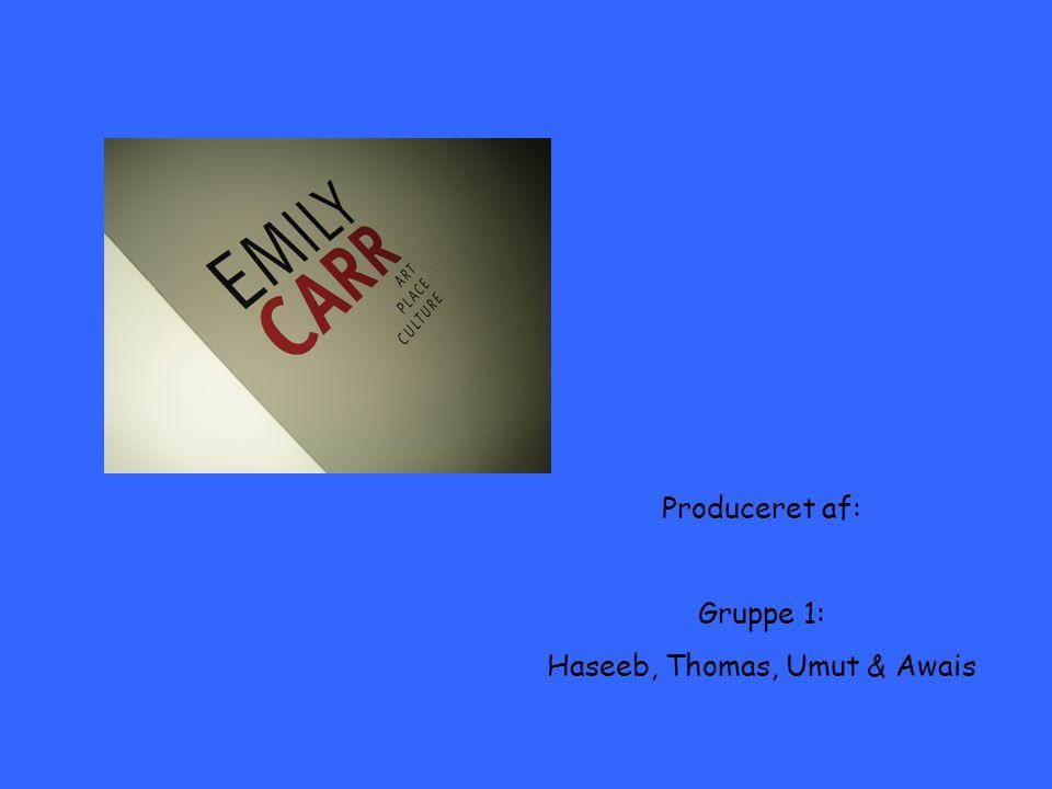 Produceret af: Gruppe 1: Haseeb, Thomas, Umut & Awais
