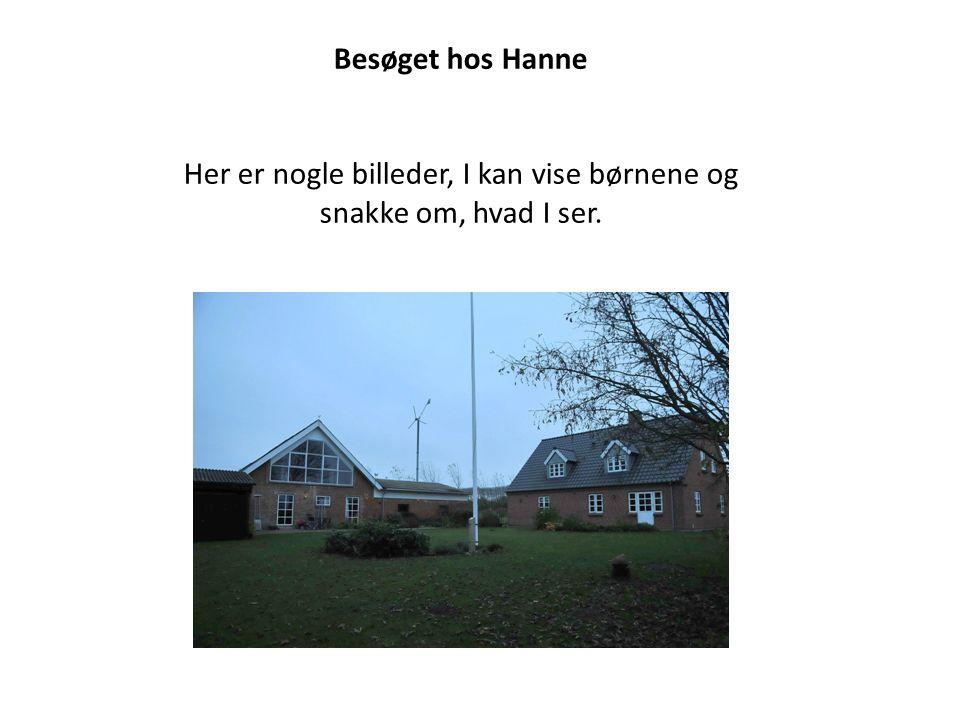 Besøget hos Hanne Her er nogle billeder, I kan vise børnene og snakke om, hvad I ser.