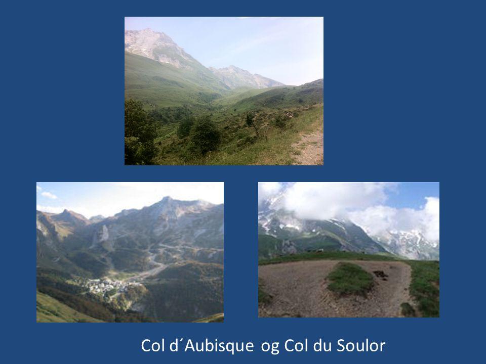 Col d´Aubisque og Col du Soulor