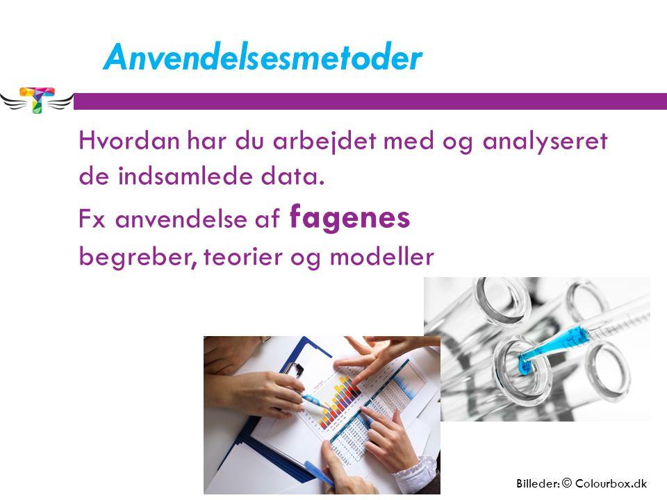 Anvendelsesmetoder Hvordan har du arbejdet med og analyseret de indsamlede data. Fx anvendelse af fagenes begreber, teorier og modeller Billeder: © Co