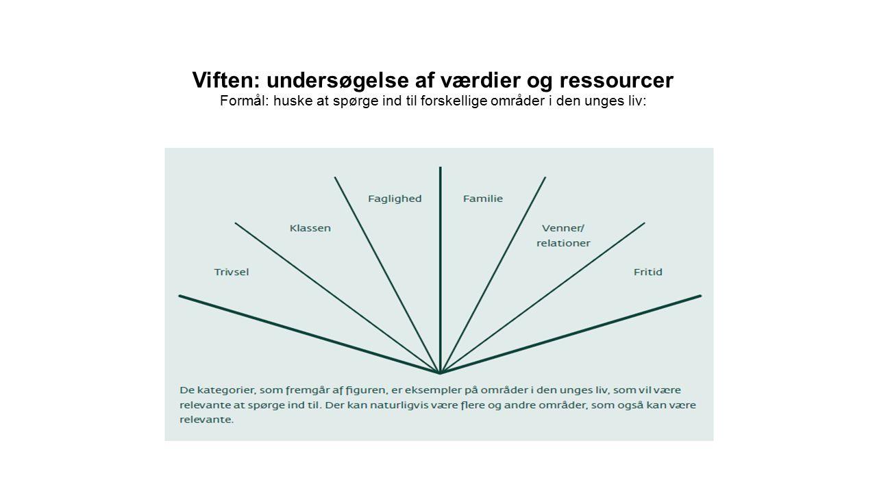 Viften: undersøgelse af værdier og ressourcer Formål: huske at spørge ind til forskellige områder i den unges liv: