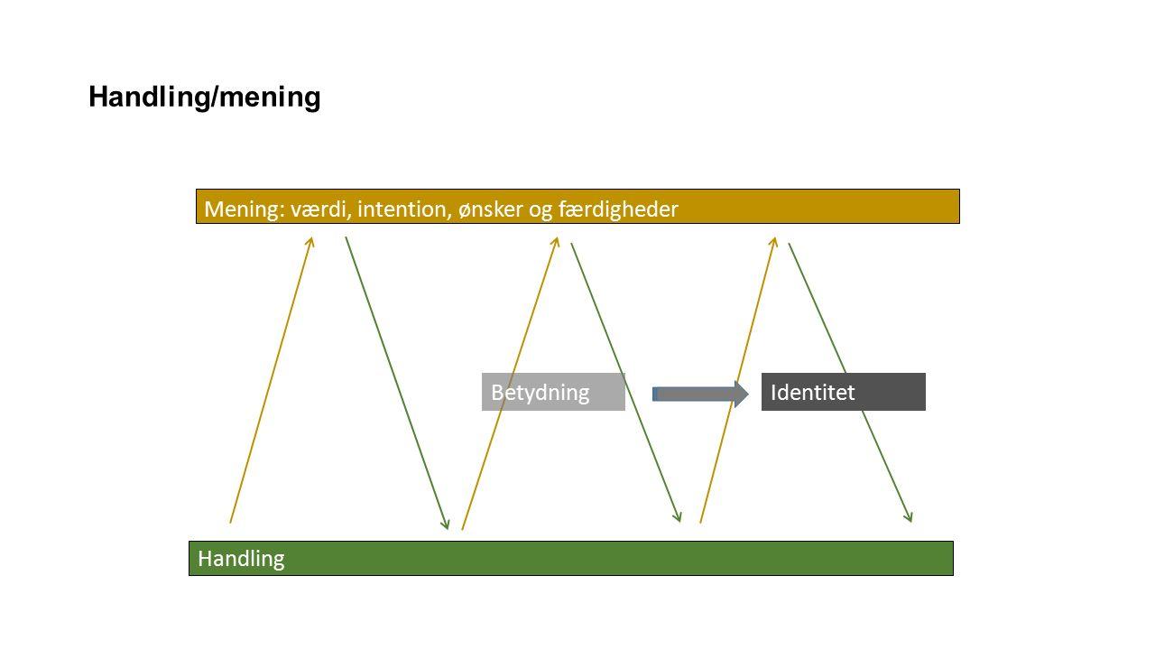 Handling Handling/mening Mening: værdi, intention, ønsker og færdigheder BetydningIdentitet