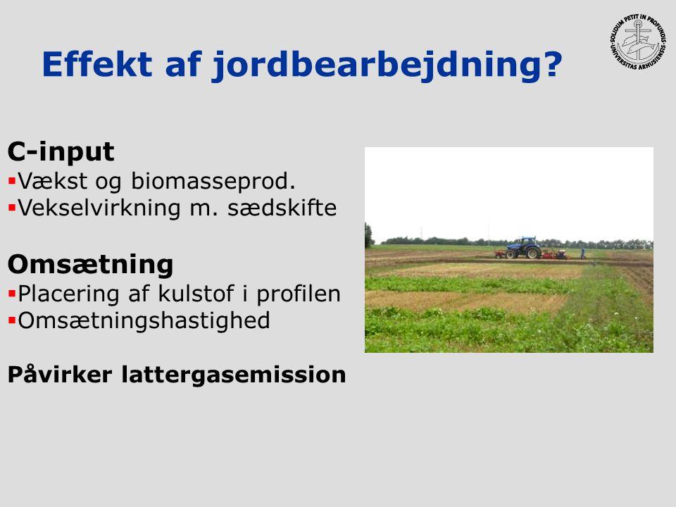 Effekt af jordbearbejdning? C-input  Vækst og biomasseprod.  Vekselvirkning m. sædskifte Omsætning  Placering af kulstof i profilen  Omsætningshas