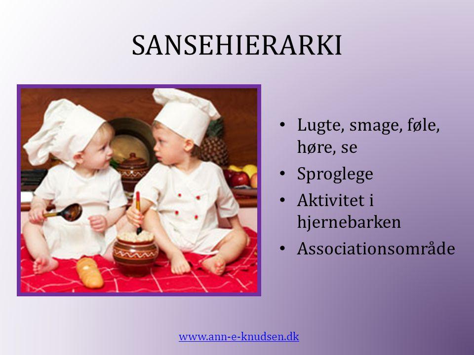 SANSEHIERARKI • Lugte, smage, føle, høre, se • Sproglege • Aktivitet i hjernebarken • Associationsområde www.ann-e-knudsen.dk