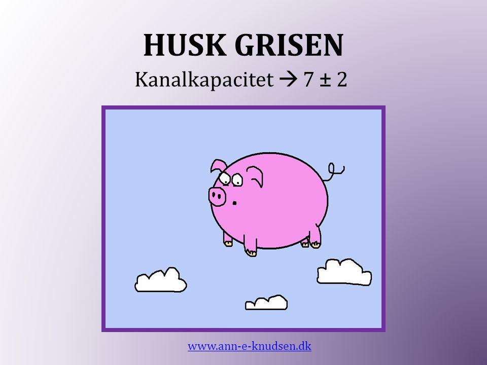 HUSK GRISEN Kanalkapacitet  7 ± 2 www.ann-e-knudsen.dk