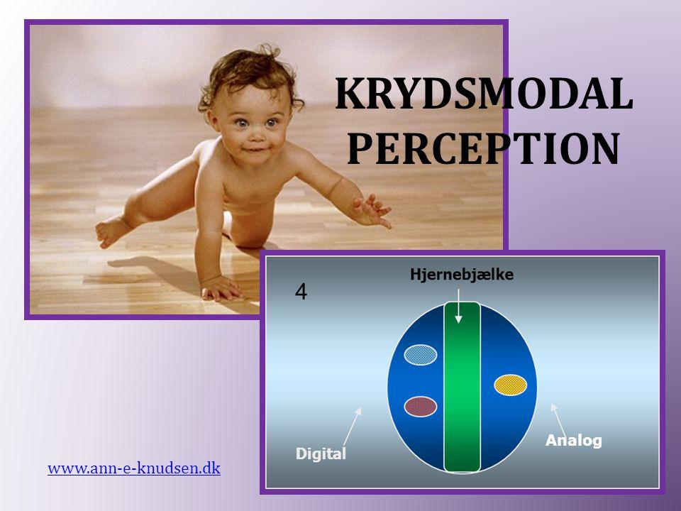 Analog KRYDSMODAL PERCEPTION