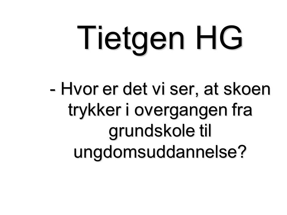 Udgangspunktet: Trives eleverne på Tietgen HG.