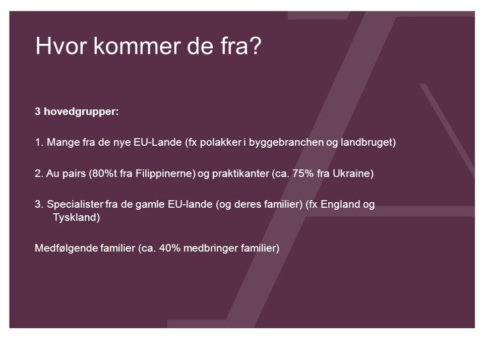 Hvor kommer de fra? 3 hovedgrupper: 1. Mange fra de nye EU-Lande (fx polakker i byggebranchen og landbruget) 2. Au pairs (80%t fra Filippinerne) og pr