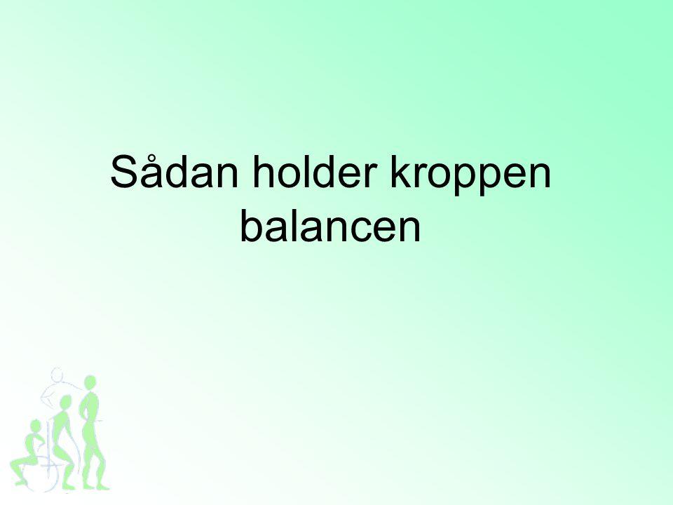 Sådan holder kroppen balancen