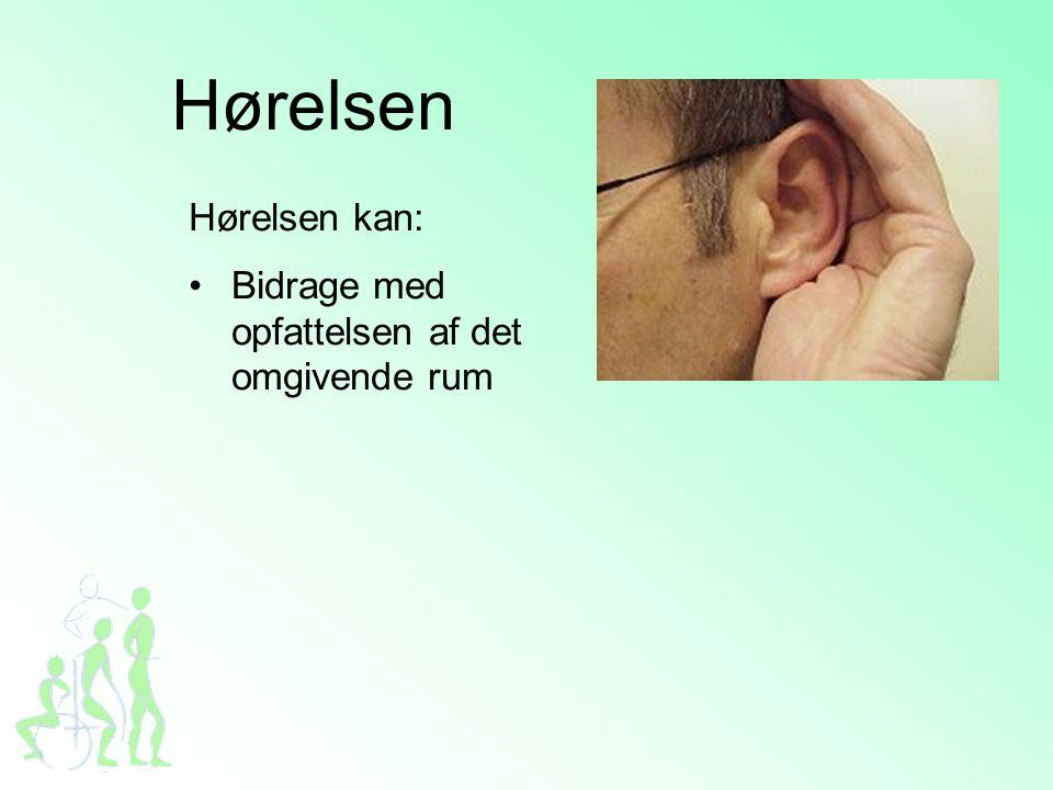 Hørelsen Hørelsen kan: •Bidrage med opfattelsen af det omgivende rum