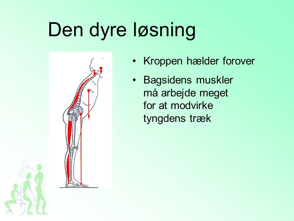 Den dyre løsning •Kroppen hælder forover •Bagsidens muskler må arbejde meget for at modvirke tyngdens træk