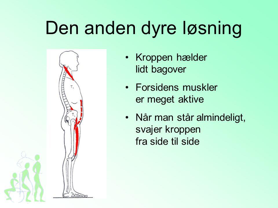 Naturlig aldring •Vores sanser sløves, når vi bliver ældre •Musklerne bliver mindre og mister styrke •Hjernen opfatter ting langsommere •Kroppen er slidt og mindre smidig Balancen svækkes!