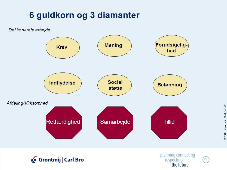 © 2007, Grontmij | Carl Bro A/S 22 6 guldkorn og 3 diamanter RetfærdighedSamarbejde Krav Forudsigelig- hed Social støtte IndflydelseMeningBelønning De