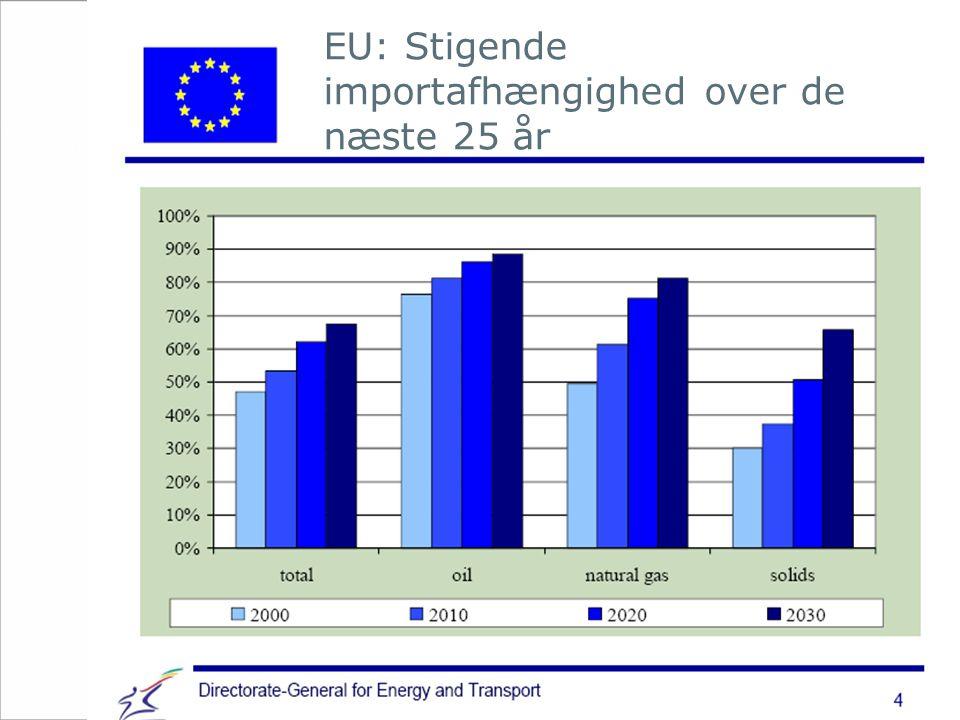 EU: Stigende importafhængighed over de næste 25 år