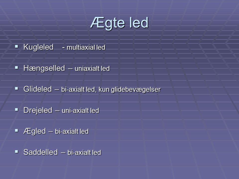 Ægte led  Kugleled- multiaxial led  Hængselled – uniaxialt led  Glideled – bi-axialt led, kun glidebevægelser  Drejeled – uni-axialt led  Ægled – bi-axialt led  Saddelled – bi-axialt led