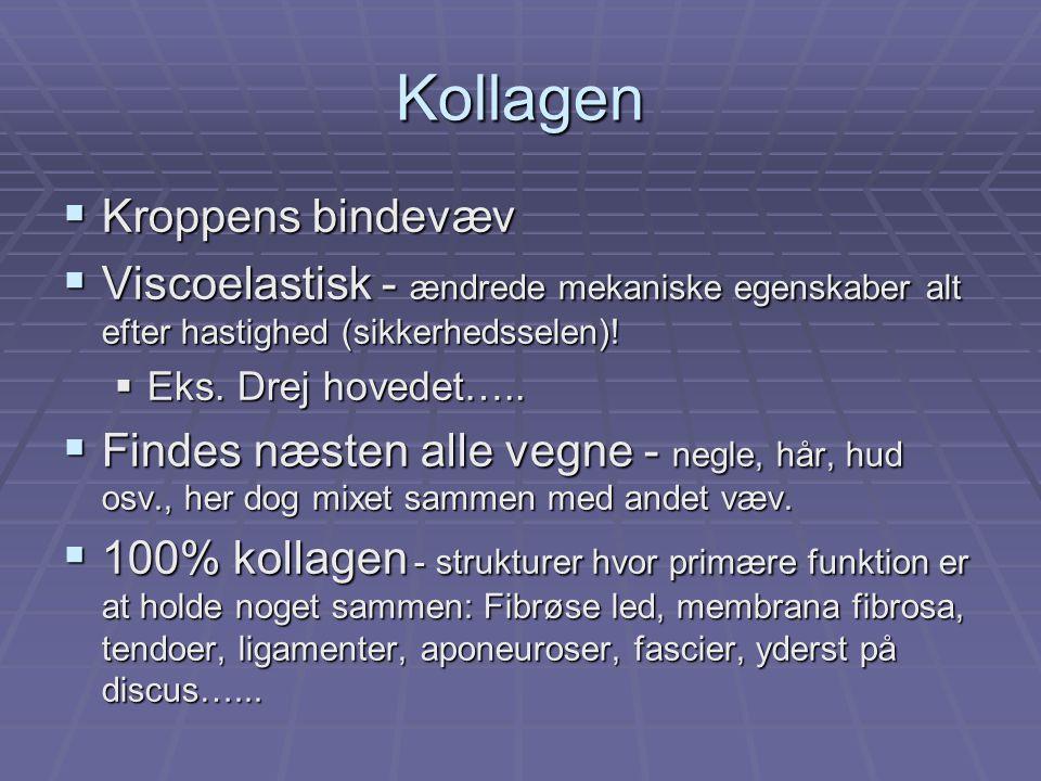 Kollagen  Kroppens bindevæv  Viscoelastisk - ændrede mekaniske egenskaber alt efter hastighed (sikkerhedsselen).