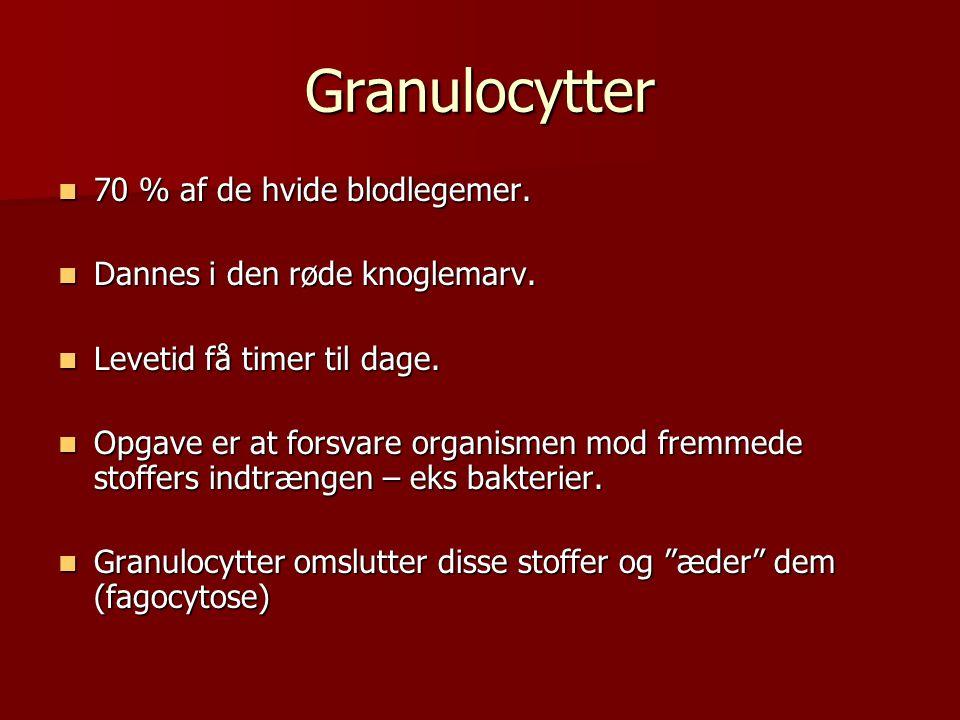 Lymfocytter  Dannes bl.a.i lymfekirtler og milt.