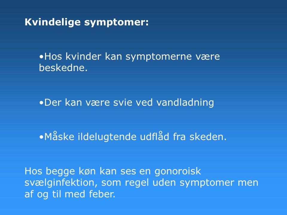 Kvindelige symptomer: •Hos kvinder kan symptomerne være beskedne. •Der kan være svie ved vandladning •Måske ildelugtende udflåd fra skeden. Hos begge