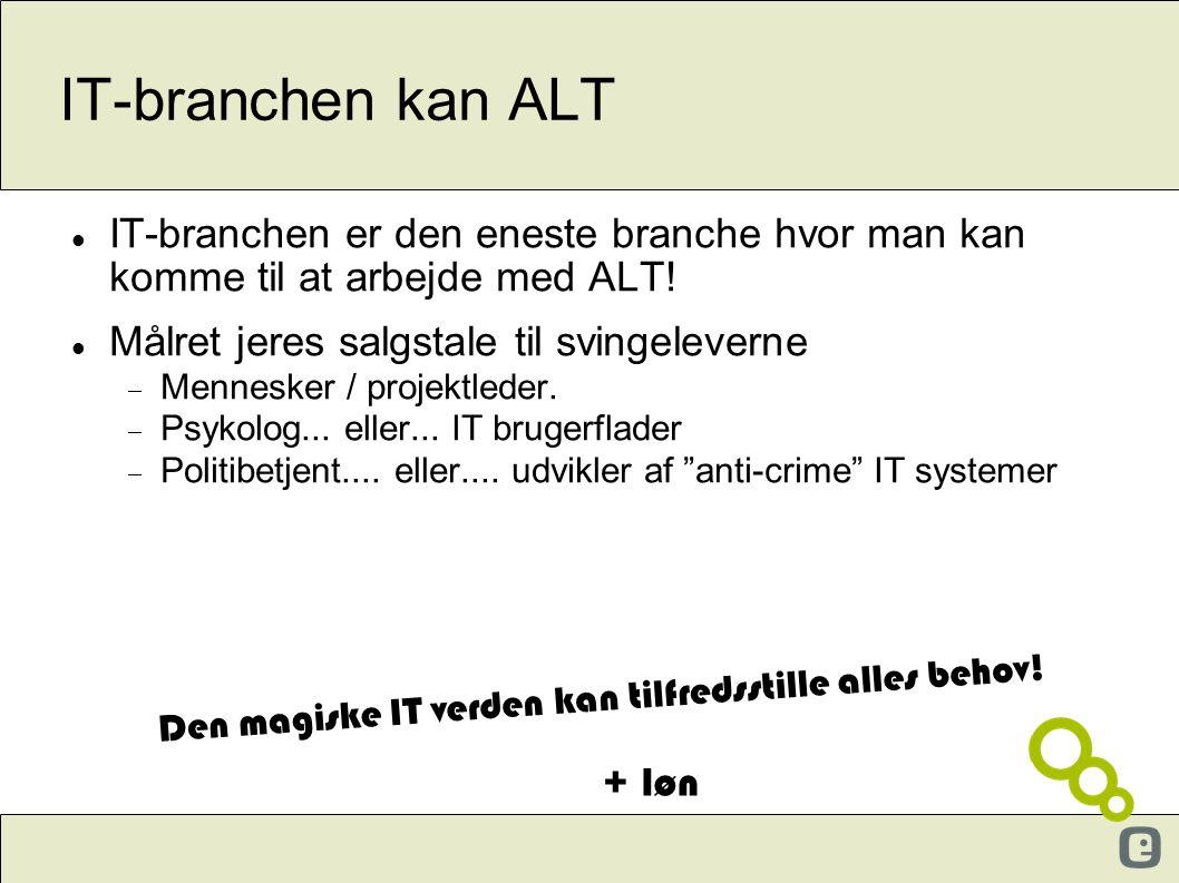 IT-branchen kan ALT  IT-branchen er den eneste branche hvor man kan komme til at arbejde med ALT!  Målret jeres salgstale til svingeleverne  Mennes