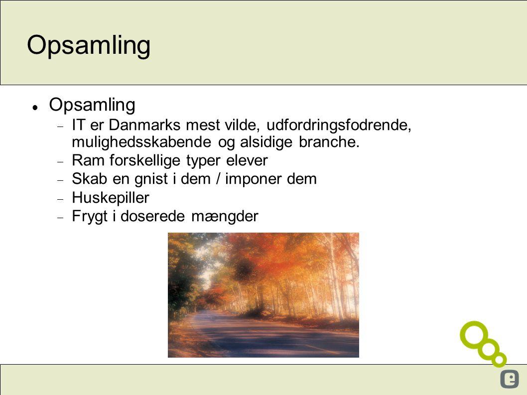 Opsamling  Opsamling  IT er Danmarks mest vilde, udfordringsfodrende, mulighedsskabende og alsidige branche.  Ram forskellige typer elever  Skab e