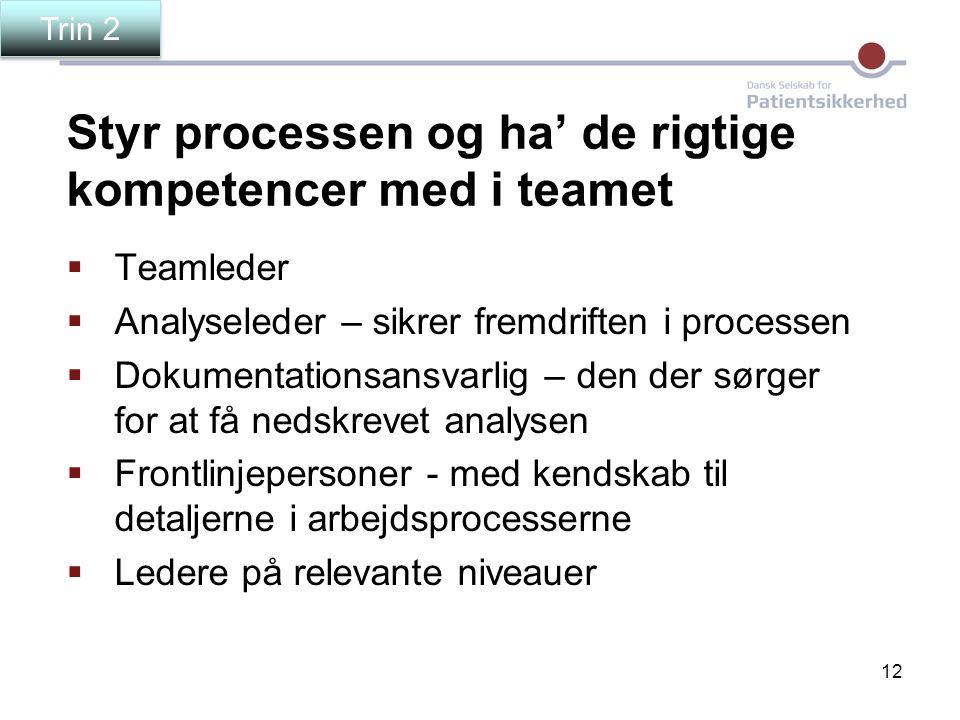12 Styr processen og ha' de rigtige kompetencer med i teamet  Teamleder  Analyseleder – sikrer fremdriften i processen  Dokumentationsansvarlig – d
