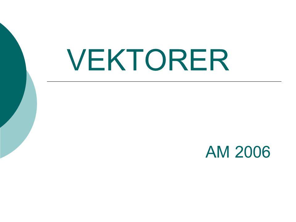VEKTORER AM 2006