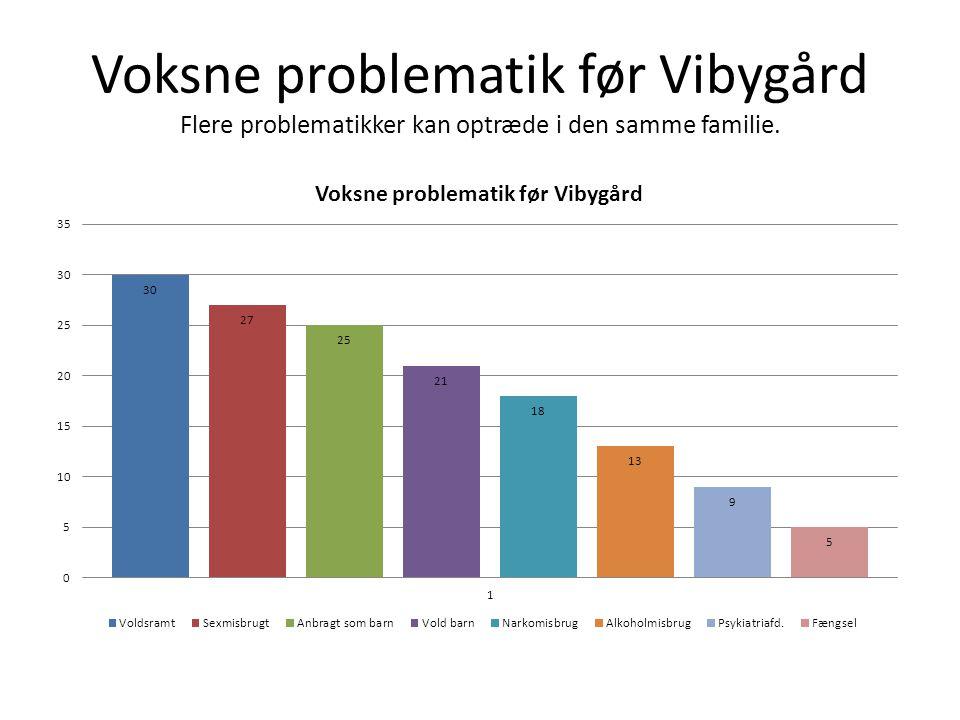 Voksne problematik før Vibygård Flere problematikker kan optræde i den samme familie.