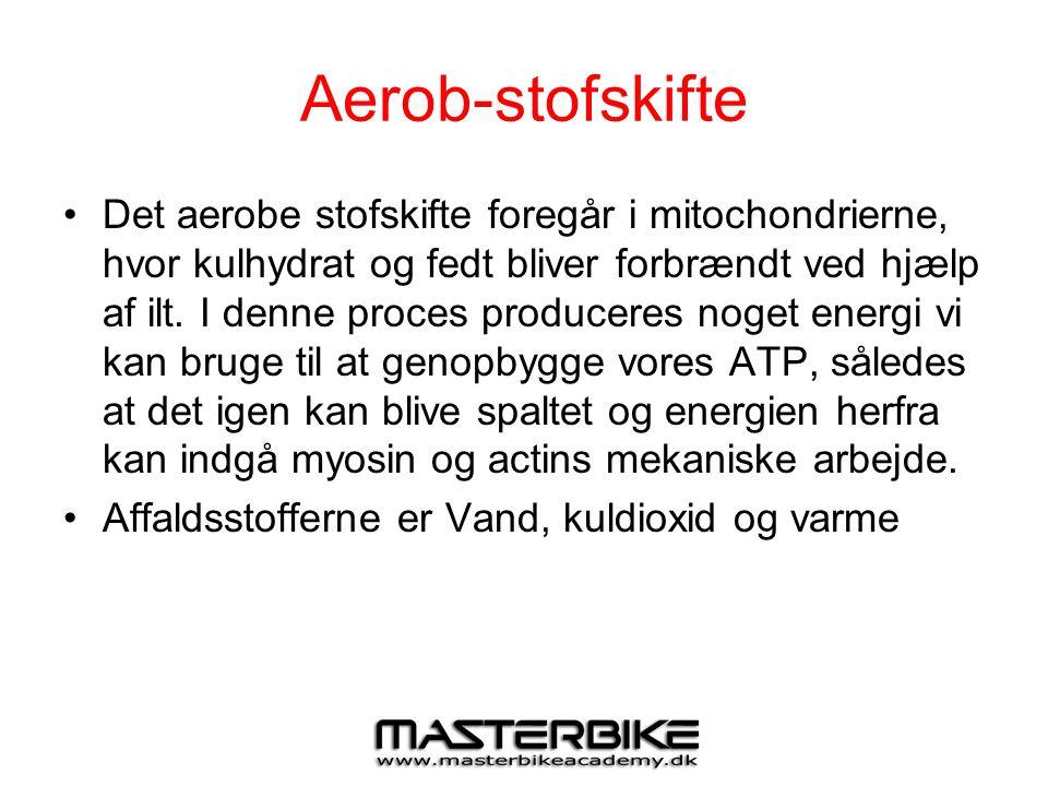 Aerob-stofskifte •Det aerobe stofskifte foregår i mitochondrierne, hvor kulhydrat og fedt bliver forbrændt ved hjælp af ilt. I denne proces produceres
