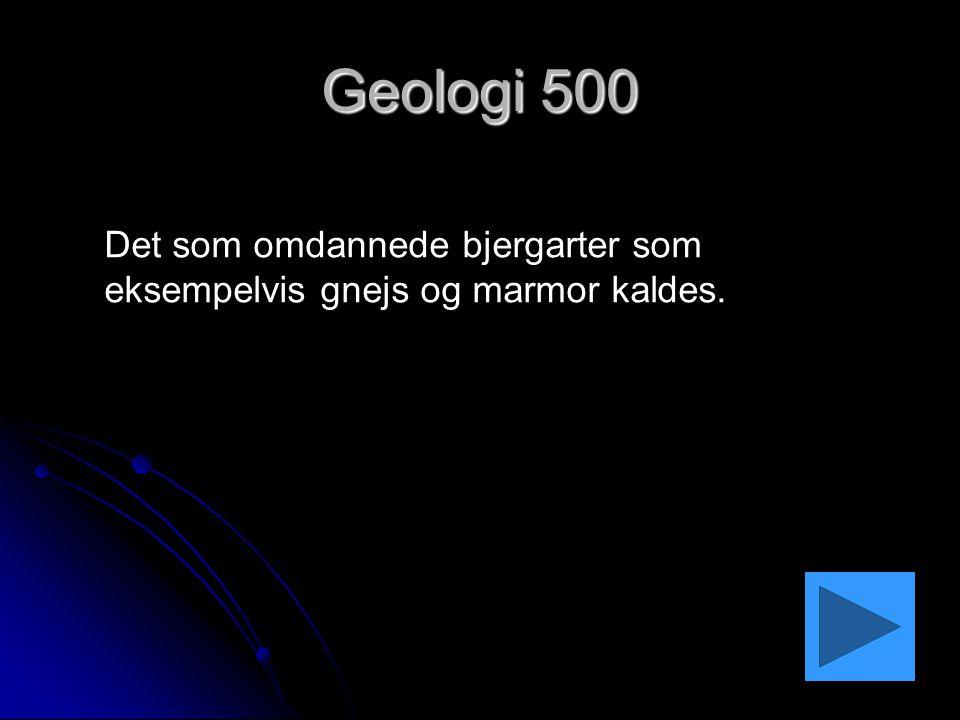 Geologi 500 Det som omdannede bjergarter som eksempelvis gnejs og marmor kaldes.