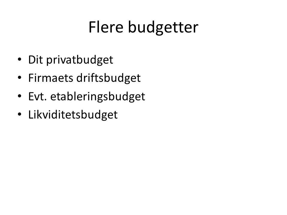 Flere budgetter • Dit privatbudget • Firmaets driftsbudget • Evt. etableringsbudget • Likviditetsbudget