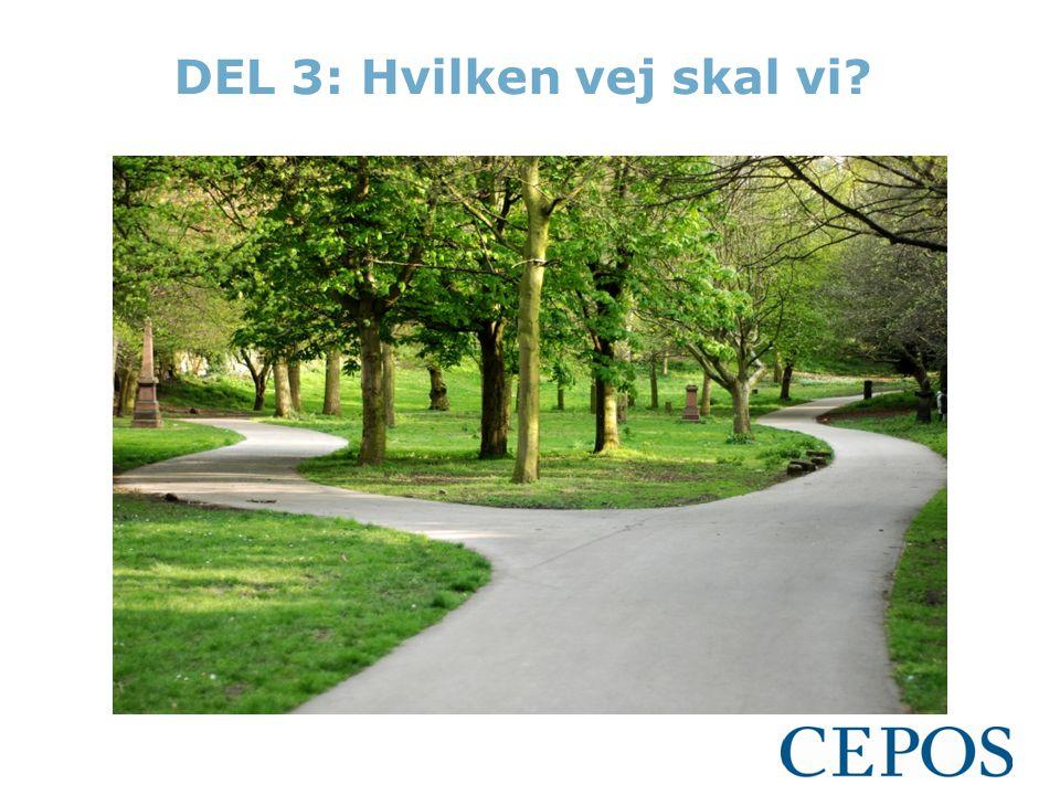 DEL 3: Hvilken vej skal vi?