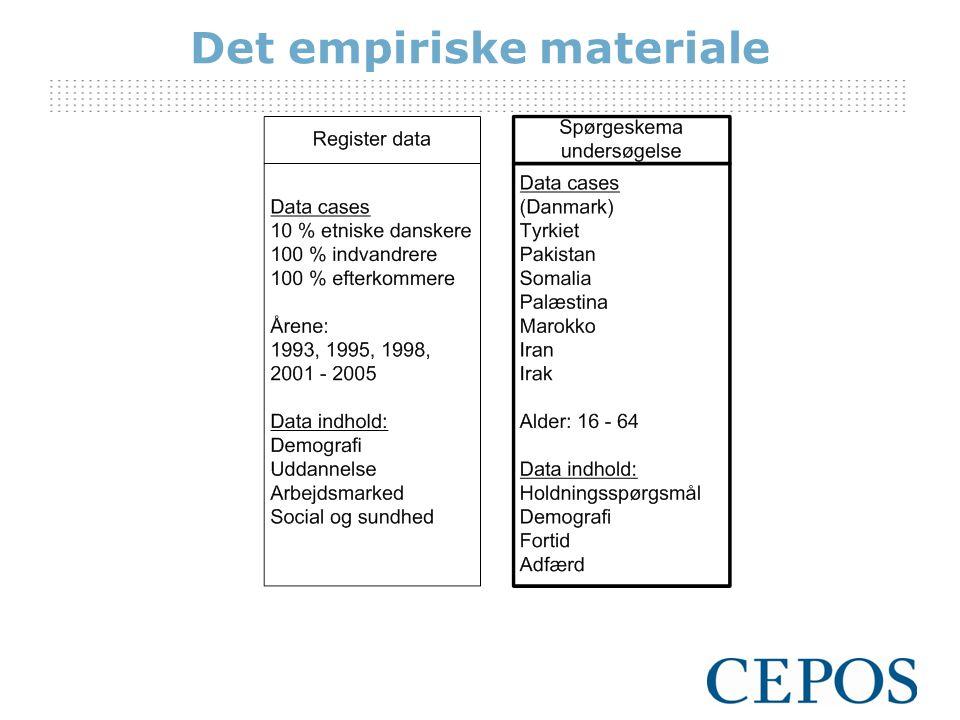 Det empiriske materiale