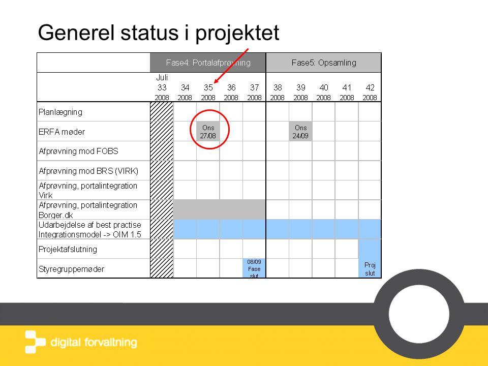Generel status i projektet