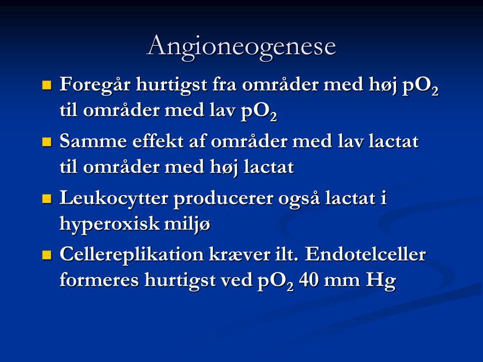 Angioneogenese  Foregår hurtigst fra områder med høj pO 2 til områder med lav pO 2  Samme effekt af områder med lav lactat til områder med høj lactat  Leukocytter producerer også lactat i hyperoxisk miljø  Cellereplikation kræver ilt.