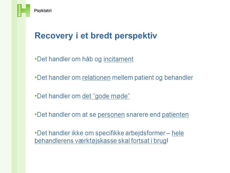 Recovery i et bredt perspektiv • Det handler om håb og incitament • Det handler om relationen mellem patient og behandler • Det handler om det gode møde • Det handler om at se personen snarere end patienten • Det handler ikke om specifikke arbejdsformer – hele behandlerens værktøjskasse skal fortsat i brug!