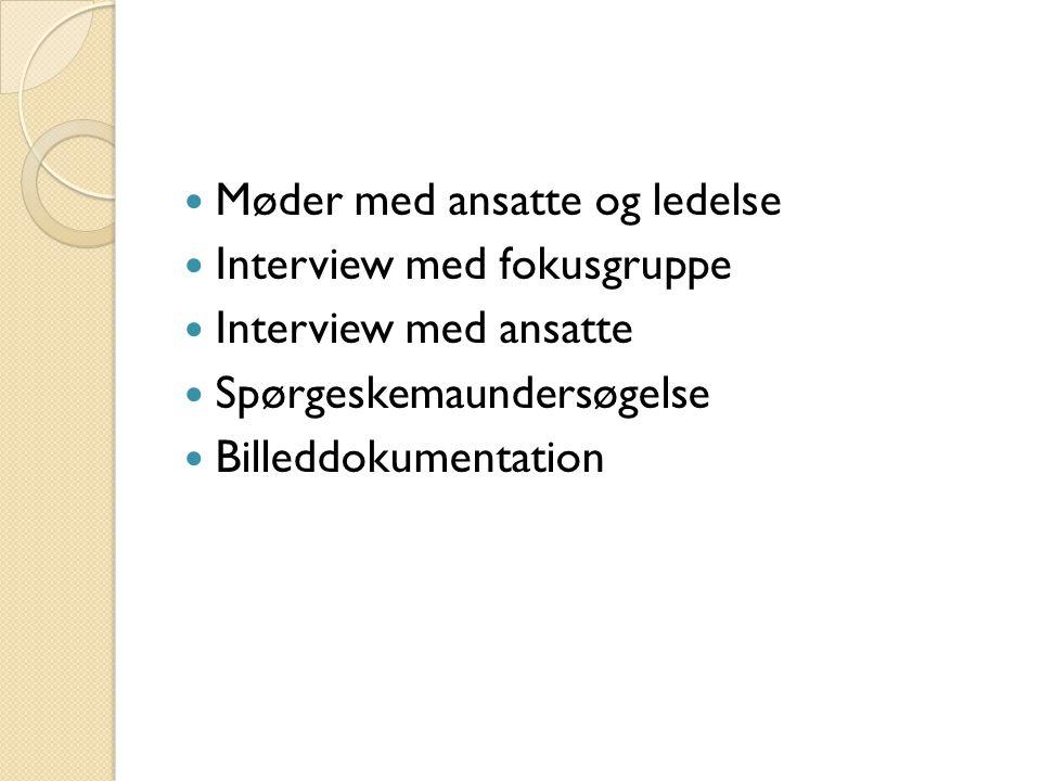  Møder med ansatte og ledelse  Interview med fokusgruppe  Interview med ansatte  Spørgeskemaundersøgelse  Billeddokumentation