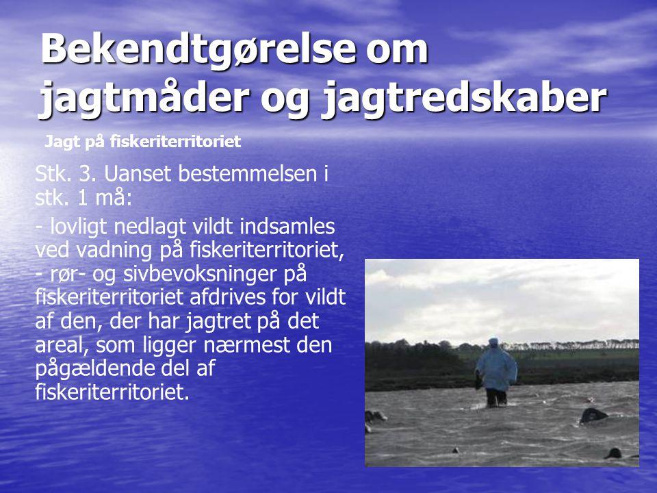 Stk. 3. Uanset bestemmelsen i stk. 1 må: - lovligt nedlagt vildt indsamles ved vadning på fiskeriterritoriet, - rør- og sivbevoksninger på fiskeriterr